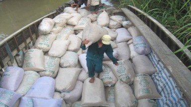 Rice exporters expect weaker sales to G2G markets in 2015